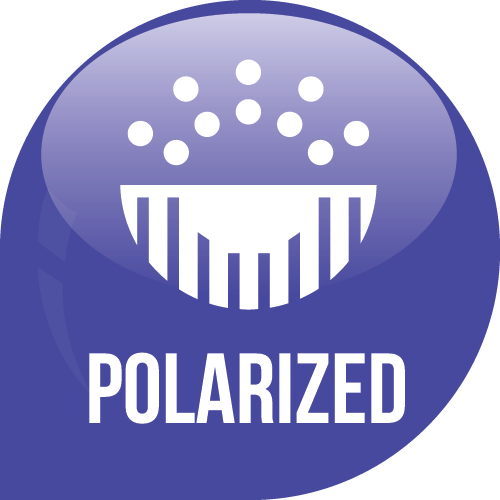 /polarized Icon